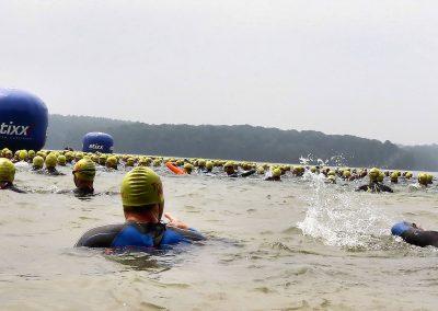 triathlon_natation